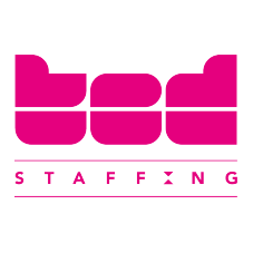 Ted Staffing logo